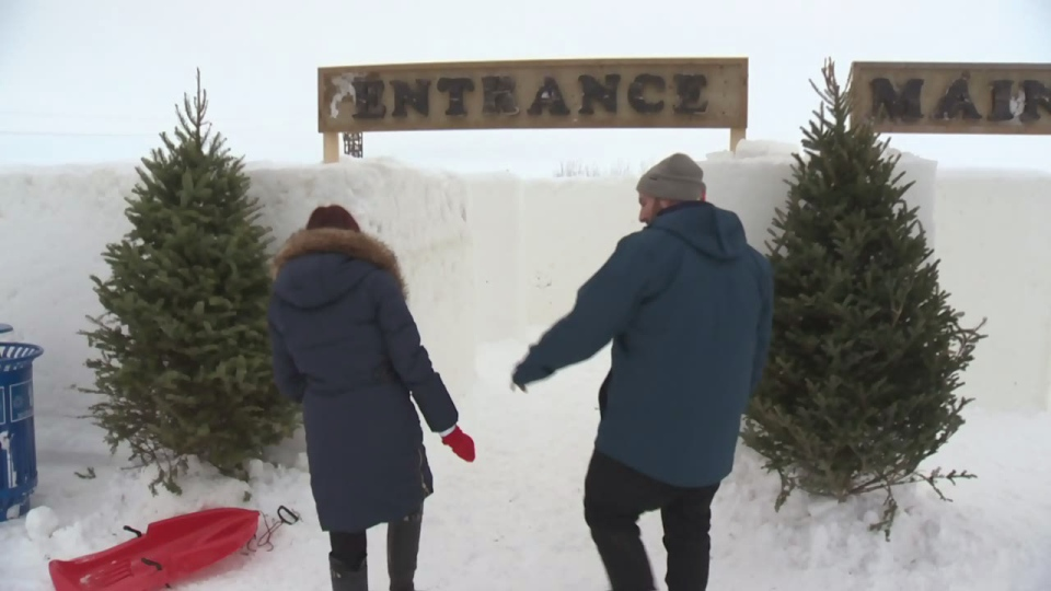 People enter A Maze in Snow, a snow maze in St. Adolphe, Man., on Saturday, Jan. 5, 2019.