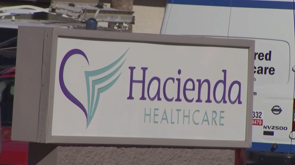 Patient in vegetative state reportedly gives birth