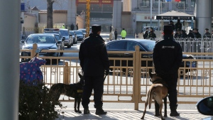 Police dogs watch as a convoy that includes a stretch limousine with a golden emblem, similar to one North Korean leader Kim Jong Un has used previously, leaves a train station in Beijing, China, Tuesday, Jan. 8, 2019.  (AP Photo/Ng Han Guan)
