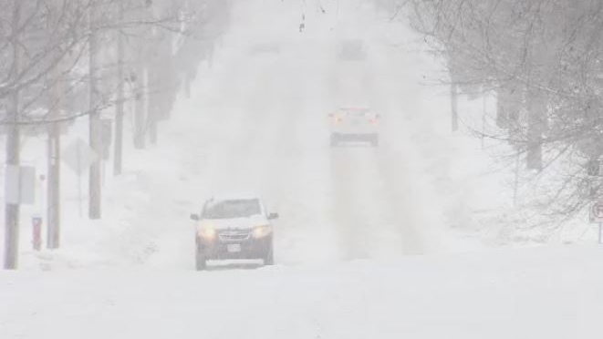 Snow falls in Fredericton on Jan. 8, 2019 as a messy storm moves through the Maritimes.