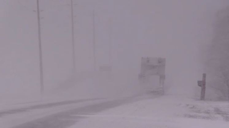 Snow blows across the roadway during squalls north of Teeswater, Ont. on Wednesday, Jan. 9, 2019. (Scott Miller / CTV London)