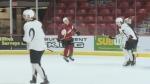 WHL Trade Deadline