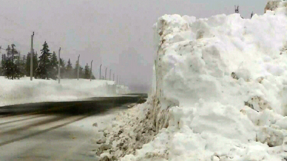 Cape Breton's towering snowbanks are drawing selfie-takers to North Mountain.