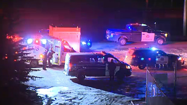 A male victim has been taken to hospital after he was shot in the hand during an attempted carjacking in northeast Calgary.