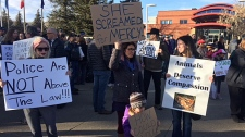 Animal rights groups protest in Lethbridge