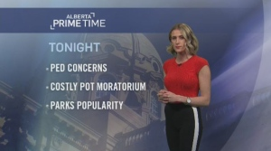 Alberta Primetime January 11, 2019