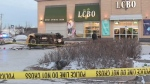 Investigation continues in fatal LCBO crash