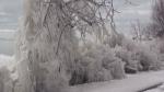 Ice turns Lake Huron shoreline into work of art