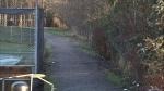 Suspect attacks girl near Surrey schools