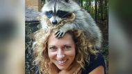 Raccoon Whisperers