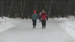 Arrowhead Provincial Park skating