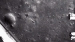 China spouts seeds on the moon