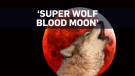 What is a Super Wolf Blood Moon?