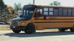School bus employees could soon strike