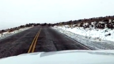 Caught on cam: Huge elk herd runs across road in W