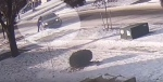 Video image shows a black sedan approach a woman in Newmarket, Ont. on Friday, Jan. 11, 2019 (Courtesy: South Simcoe Police/YouTube)