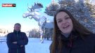 In a video, a Norwegian town's deputy mayor jokingly mocked Moose Jaw, Sask. for its attempt to reclaim the title of having the world's largest moose sculpture. (Dagbladet)