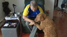 84-year-old Stan Parsons and his six-year-old labradoodle Jellybean are searching for a new apartment after their lease was not renewed