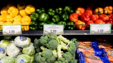 Study finds we waste more food than we consume