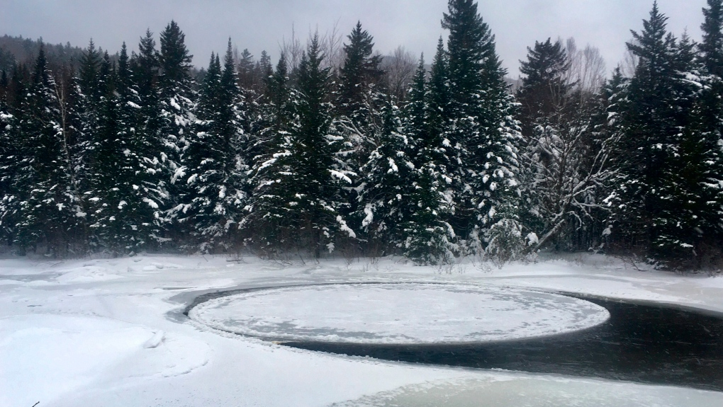 ice disk 2