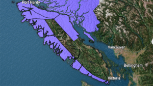 Winds of up to 110 kilometres an hour are expected to slam parts of Vancouver Island Friday night. Jan. 18, 2019.