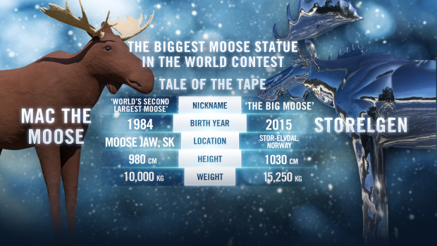 Moose statue comparison