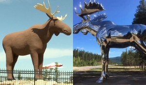 A Norway town's deputy mayor has told the mayor of Moose Jaw, Sask., that she will do whatever is necessary to prevent Canada from reclaiming the title of having the world's largest moose sculpture.