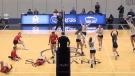 Spartans volleyball team having miracle season