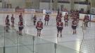 Edson junior hockey club