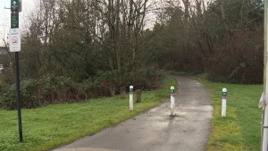 For the second time in a week, police in Saanich are investigating a case of indecent exposure. (CTV)