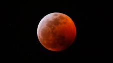 This photo shows the moon during a total lunar eclipse, seen from Los Angeles, Sunday Jan. 20, 2019. The entire eclipse will exceed three hours. Totality - when the moon's completely bathed in Earth's shadow - will last an hour. Expect the eclipsed, or blood moon, to turn red from sunlight scattering off Earth's atmosphere. (AP Photo/Ringo H.W. Chiu)