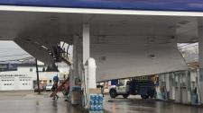 Irving canopy damage