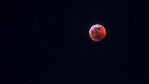 Super blood wolf moon captured in Vancouver. (@neeraj.ingle/Instagram)