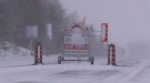 Roads are closed on several roadways due to reduced visibility on Monday, Jan. 21, 2019 (CTV News/Roger Klein)