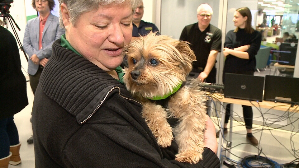 'Leo',part of the new Dog Squad team at Algonquin