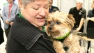 Dog Therapy brightens Blue Monday
