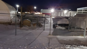 The dog was photographed sitting outside its shelter at Hully Gully in London, Ont.