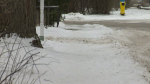 Homeowners in Kitchener can face fines if they don't clear the snow from their sidewalks.