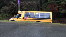 A school bus is seen in a ditch north of Mission, B.C. on Tuesday, Jan. 22, 2019. (Kevin Macdonald for CTV News)