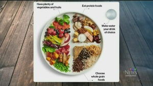 The rationale behind the new food guide