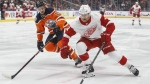 Detroit Red Wings' Nick Jensen (3) is chased by Edmonton Oilers' Alex Petrovic (15) during first period NHL action in Edmonton on Tuesday, Jan. 22, 2019. THE CANADIAN PRESS/Jason Franson