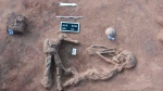 This undated handout photo provided by the Egyptian Antiquities Authority, shows a skeleton, at the Kom al-Kholgan archeological site, about 140 kilometers (87 miles) north of Cairo, Egypt. (Egyptian Antiquities Authority via AP)