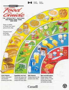 1997 Food Guide