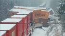 CP Rail officials are on scene of a train derailment in Ajax.