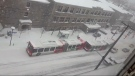 OC Transpo bus stuck in snow