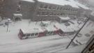 OC Transpo bus stuck in snow