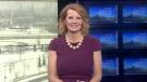 News at Six - Tara Nelson - January 23, 2019