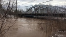 Trout Creek in Sussex, N.B. flooded its banks, spilling into nearby streets on Jan. 24, 2019.