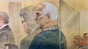 Bruce McArthur is pictured in this court sketch from Jan. 29, 2019.