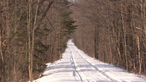 Police say a 14-year-old boy died on Sunday after his motorized snow vehicle left the trail in Kearney, Ont. and struck a tree.